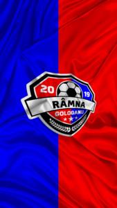 Râmna Gologanu Flag Left SM Logo Vertical